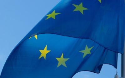 Europawahl 2019 – Schicksalswahl?
