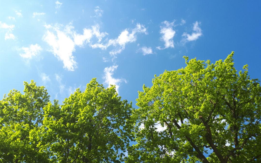 Sommer – heiss, heisser, Unwetter?