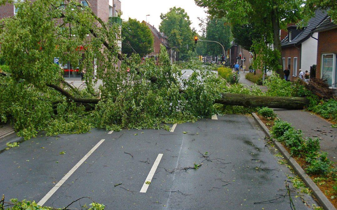 Sturmschaden – welche Versicherung zahlt?